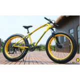 FatBike Love Freedom Disk 26''